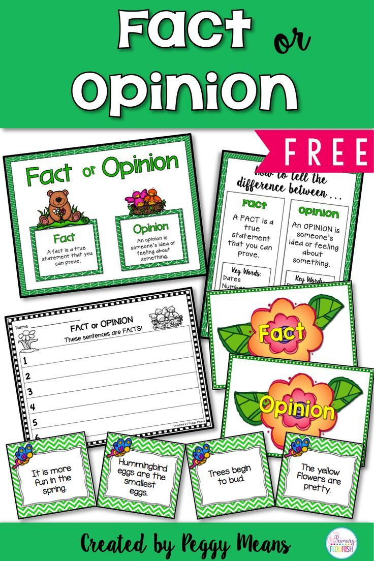 This freebie will be a great addition to your Literacy workstations! This language arts activity will help your students identify Facts from Opinions. This is such an important reading comprehension skill for the kiddos - it helps develop discernment in all areas of their lives.