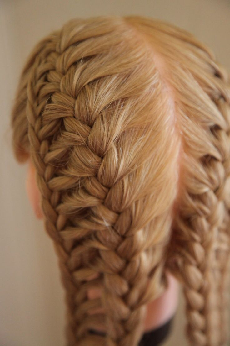 French Ladder Braids