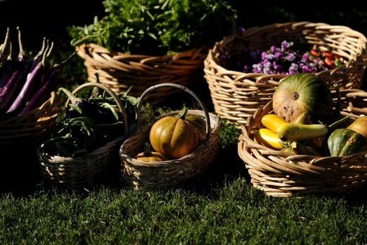 Seven best #fall foods: Harvest Festivals, Fall Flavored, Fall Harvest, Fall Food, Farms To T Events, Groovi Recipes, Embrace Farmtot, Delicious Recipes, Farmtot Events