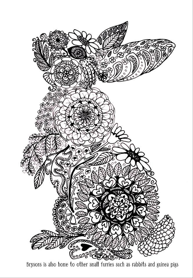 574 best coloring zentangle doodle animals images on