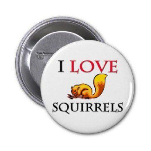 Squirrel Appreciation Day - January 21st Squirrel Button