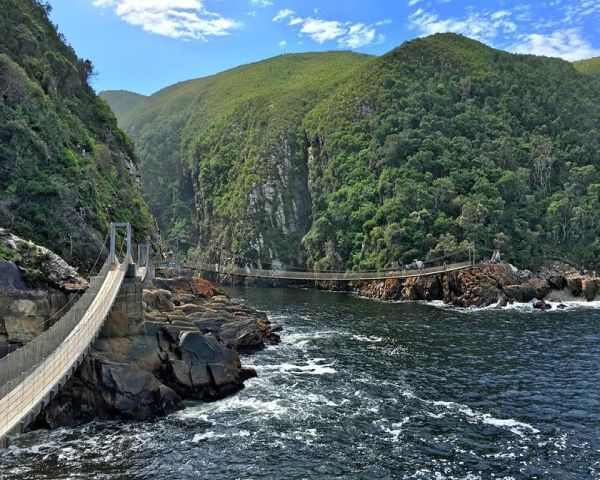 Originally built in 1969, spanning 77 metres and hanging just seven metres above the churning waters of the Storms River, the Storms River suspension bridge is situated in the Tsitsikamma National Park (which forms part of the Garden Route National Park) and is one of the most popular tourist attractions of the Tsitsikamma. The bridge has since been rebuilt by San-Parks to ensure its stability and safety.     The pathway leading to the suspension bridge covers 900 metres of the Tsitsikamma…
