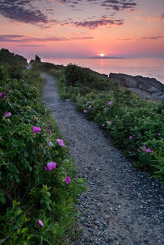 Giant Stairs Trail, Bailey Island, Harpswell, Maine (6494)… | Flickr