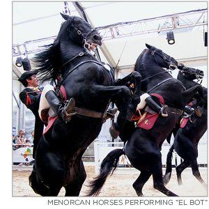 dream trip - Menorcan horse festival in Spain