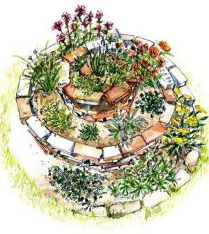 spirale aromatica