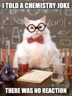 Chemistry Cat: Cat Strike, Science Cat, Cat Humor, Funny Cat, Chemistry Cat, Cat Jokes, Chem Cat, Chemist Cat, Cat Memes