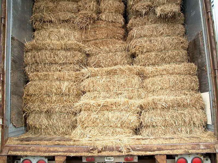 Bridgewater Farm Supply - Mulch hay (bale), $5.50 (http://www.bridgewaterfarm.com/mulch-hay-bale/)