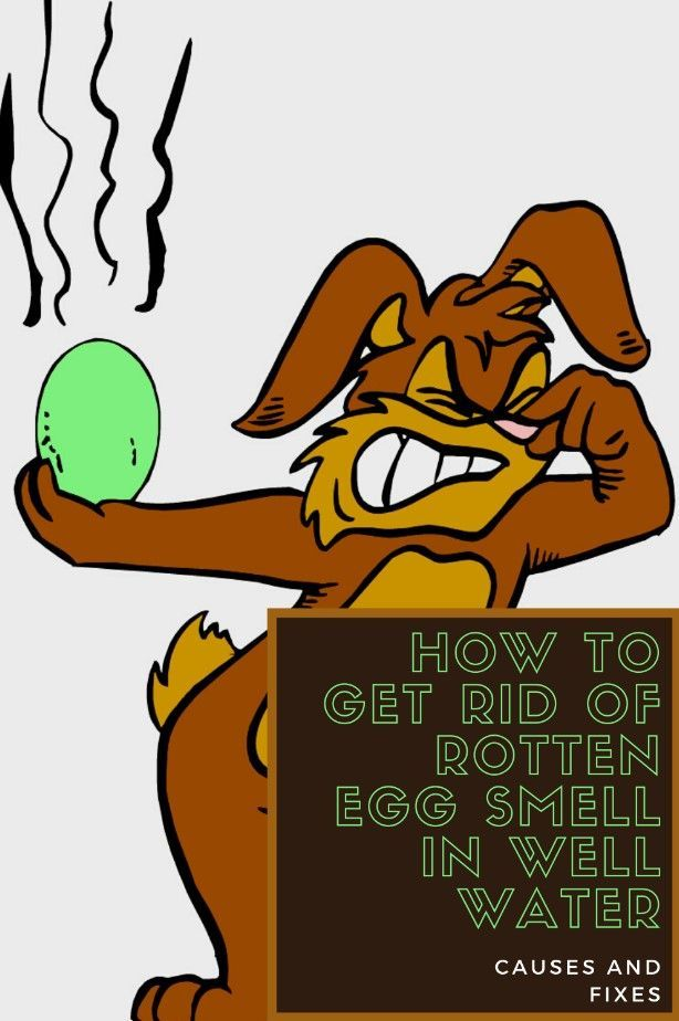 How To Get Rid Of Rotten Egg Smell In Well Water Gridsub Com Water Well Rotten Egg Rotten