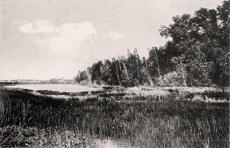 Университетское озеро. нач ХХ века