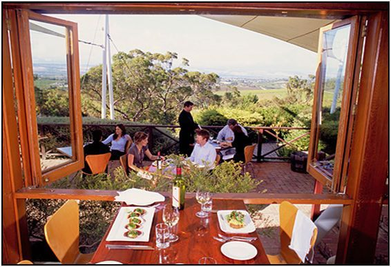 D'Arenberg Winery
