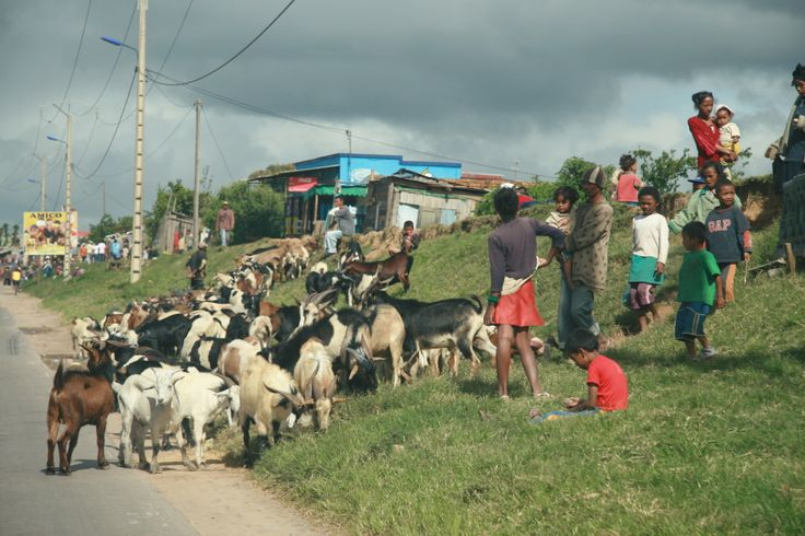 Exciting Madagasgar tour 2013.Everyday view from highway to Tana, capital of Madagascar.