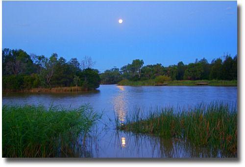 Jells Park Melbourne Australia compliments of http://www.flickr.com/photos/imageo/2278391902/
