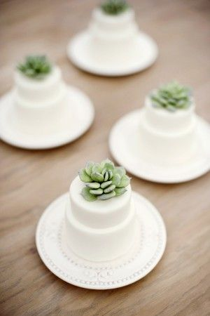 Lovely detail. Mini cakes with succulent topper