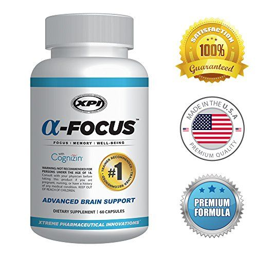 Best brain support supplements