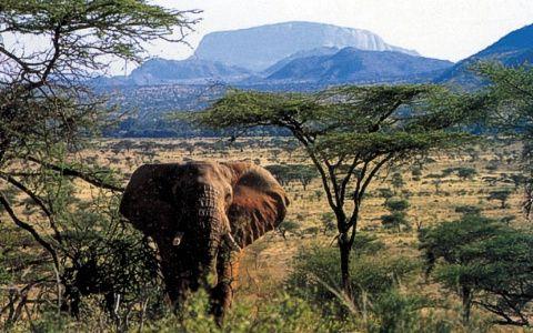 Kenya