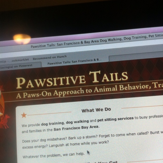 Pawsitive!