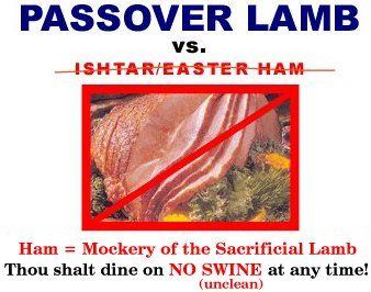 Passover Lamb vs. Ishtar/Easter Ham  You might be surprised where the Easter ham came from.  It didn't come from our Jewish Messiah because He wouldn't have eaten it.