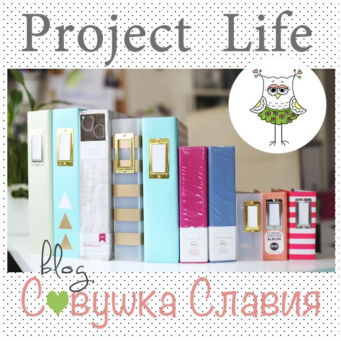 /  PROJECT LIFE CHALLENGE  2015  /