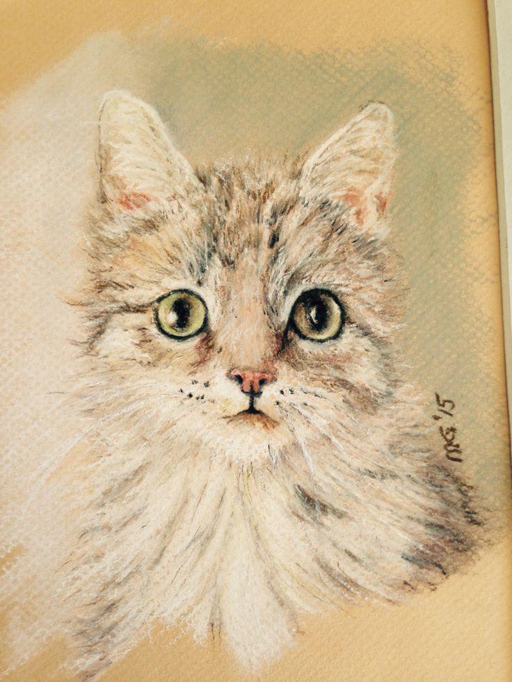 chaton, pastel secs, avril 2015