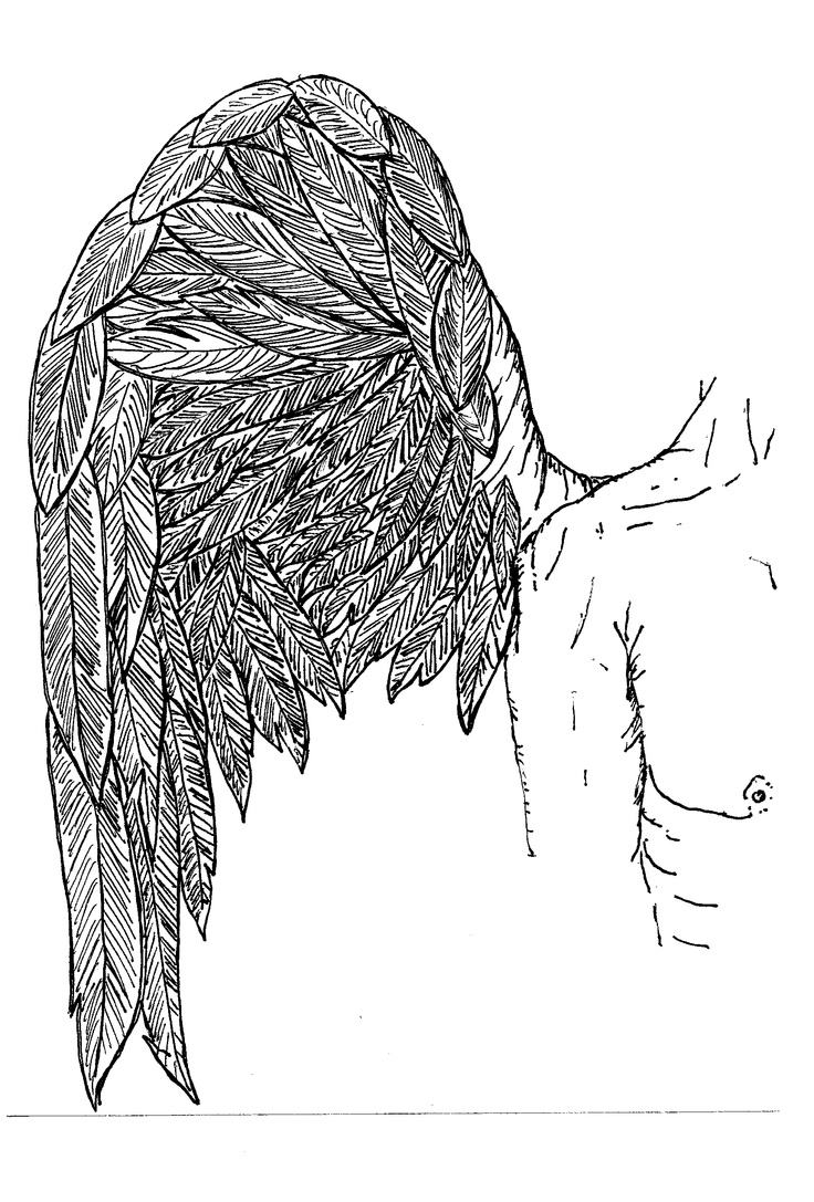 Feather and Wing: Voices, Wings, Feathers, Angels, Head