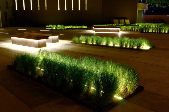 Linear lighting | Landscaping | plant features | deck | seat lighting | outdoor design | LED strip | greenery | garden lighting