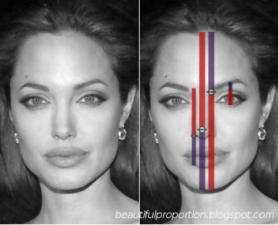 Well proportioned faces! Beautiful Proportion by Fibonacci