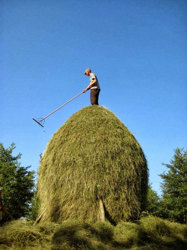 The Art of the Romanian Haystack - Kuriositas - series of pictures of haystacks at link