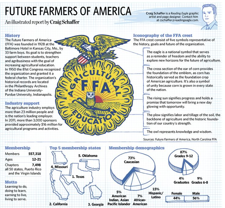 Printables Ffa Emblem Worksheet 1000 images about ffa greenhands on pinterest foxs news sketchbook jan 23 a close look at the future farmers of america