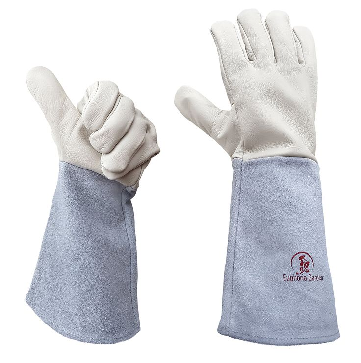 Rose Gardening Gloves by Euphoria - Cowhide Leather Garden Gauntlet Gloves - Puncture Resistant Work Gloves for Men and Women in S, M, L (Runs Large) - Best for Pruning Blackberries and Thorny Bushes