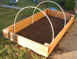 raised garden bed with PVC hoops to hold bird netting, rabbit netting, a frost cover, or in my case, shade cloth.