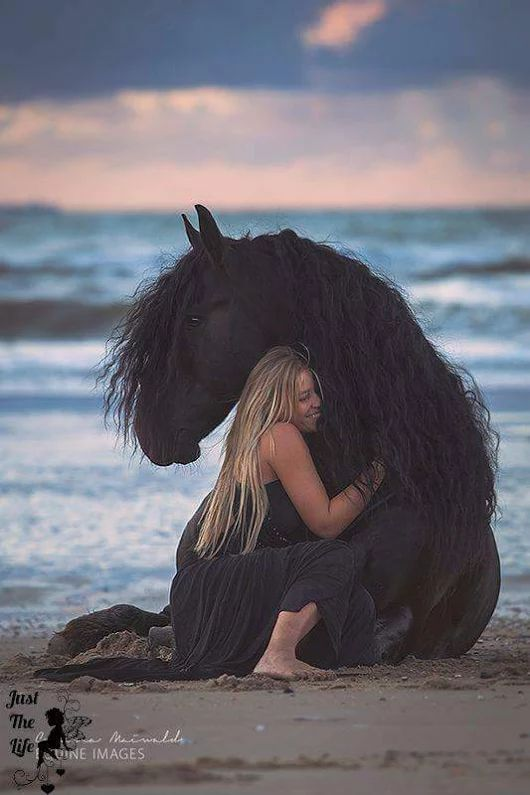 Such a gentle giant. Girl hugging beautiful black horse on the beach.