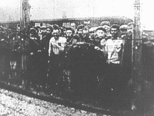 During the entire period of its existence, the Majdanek camp was under construction. Construction on the camp began in October 1941 with the arrival of about 2,000 Soviet prisoners of war