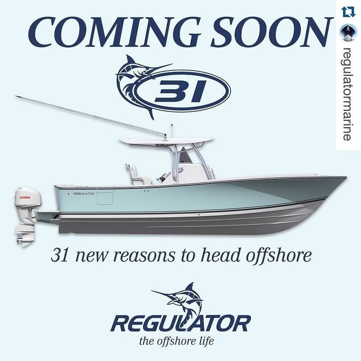 Best Lanchas Images On Pinterest Boats Motor Boats And Boating - Blue fin boat decalsblue fin sportsman need some advice pageiboats