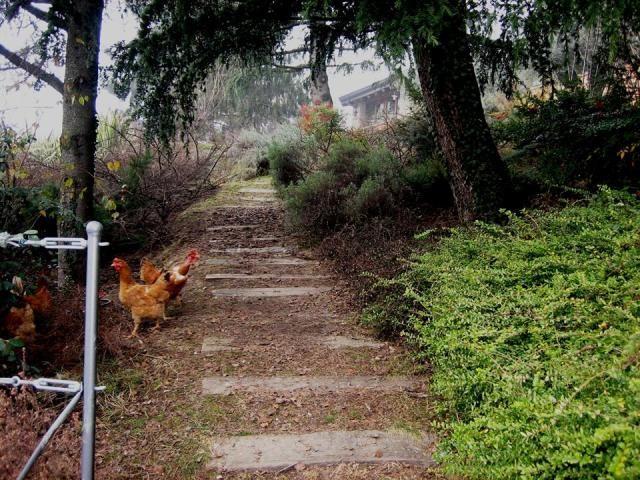 Sistemazione esterna casa di campagna - Vialetto con traversine di ferrovia - Maria Teresa Azzola Designer - Sommi Zandobbio (BG) 2001-2002