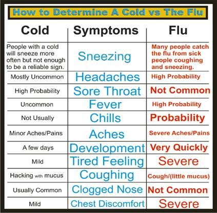 Diary Of A School Nurse: Cold or Flu