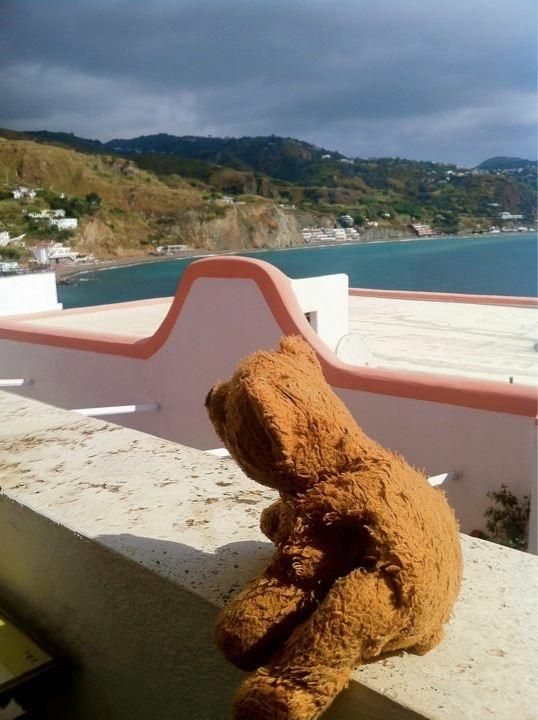 Lost on 15 Jan. 2016 @ Abu Dhabi Etihad plane. Brown teddy bear, little used, filled with pearls. Lost it on Etihad flight 279 from Male to Abu Dhabi. Visit: https://whiteboomerang.com/lostteddy/msg/2tydzw (Posted by Katja on 17 Jan. 2016)