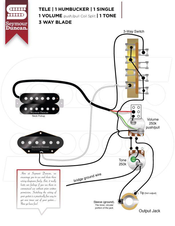 Wiring       Diagrams     Seymour Duncan   Tele Hum     Single    w