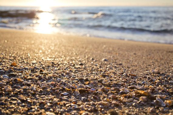 Blackwoods Beach Cronulla Sutherland Shire Sydney NSW