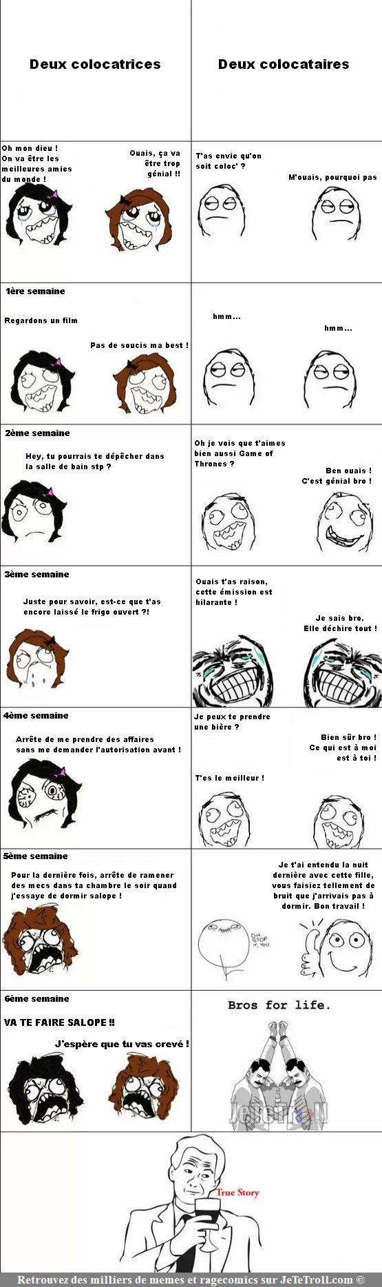 Images drôles, ragecomics, mèmes... sur JeTeTroll.com: Différence colocataire/colocatrice !