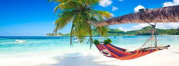 Image result for seychelles beach pink sand