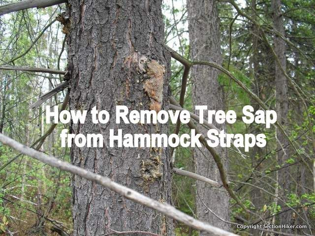 how to clean tree sap on car
