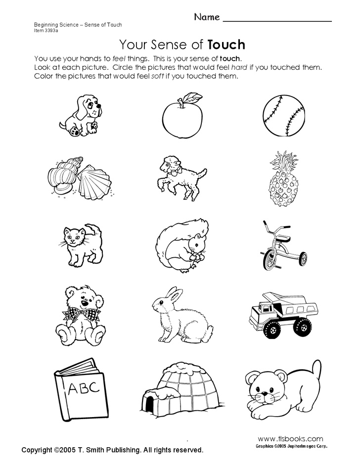 Best 25+ Five senses worksheet ideas on Pinterest | 5 senses ...