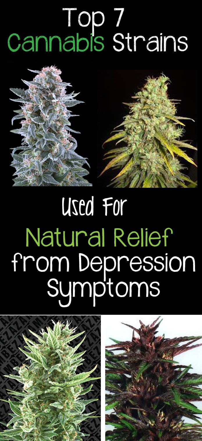 Top 7 Marijuana Strains-Natural Relief  from Depression Symptoms