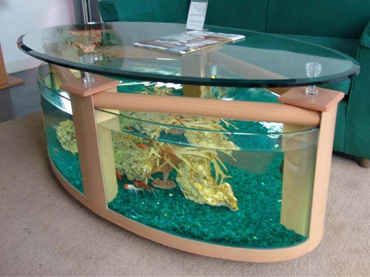 Transform The Way Your Home Looks Using A Fish Tank Photo