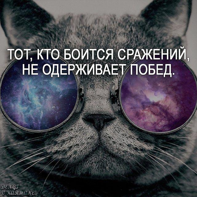 #победа #мудрость #мысли #цитаты #мотивация #мотивашка #цитатыпрожизнь…