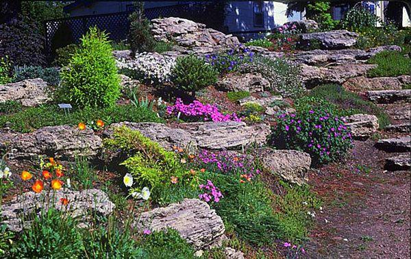 natural terraced rock garden