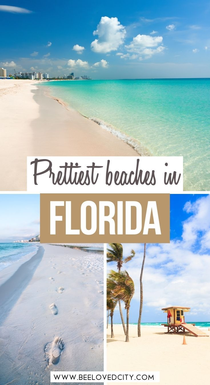 Best Beaches In Florida From Miami Beach To States Parks Beeloved City Beaches Vacation Destinations Usa Vacation Destinations Florida Beaches Vacation
