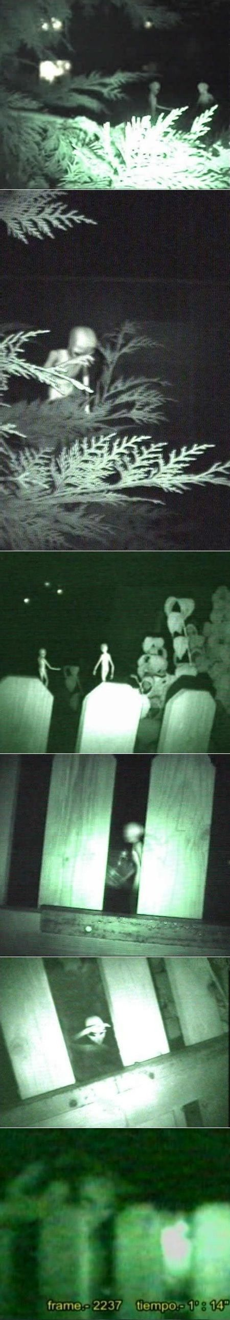 """1999 London - """"Mr. Unknown sped back into the house and grabbed his video camera. He was hoping to film the UFO before it disappeared, but instead he filmed what he claimed to be a type of small, ghost-like beings who seemed to be rummaging around behind his fence. The total length of the film was about four (4) minutes. The strange beings made a sound which was barely audible, and somewhat muffled. The sounds of the small beings had attracted him to the area. Mr Unknown was frank in…"""