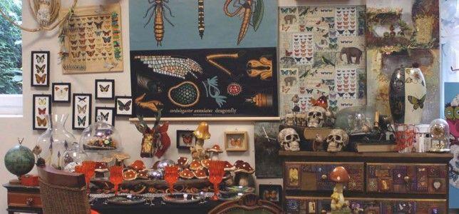 Vitrine cabinet de curiosités | Loisirs créatifs, scrapbooking, décoration, obernai, strasbourg, alsace