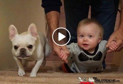 Der Bully und seine kleine Schwester